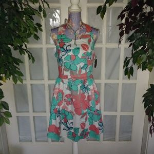 Flirty Fit & Flare Dress NWT
